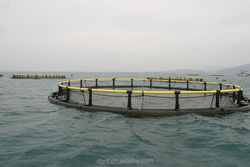 Pisiculture deep sea resist storm fish farming net cage with good quality HDPE pipe and HDPE net