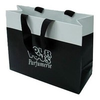 China esteemed factory supply paper shopping bag