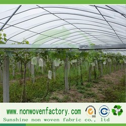 tunnel garden greenhouse, used greenhouse, agriculture greenhouse