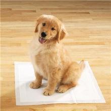 disposable pet training mat,pet urine pad