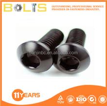 Truss head hex socket screws