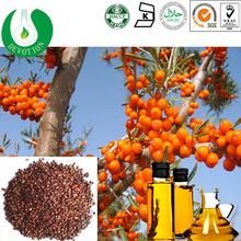 GMP&COSHER Chronic gastritis medicine/Organic Certificated Seabuckthorn Seed Oil /Organic Seabuckthorn seed oil