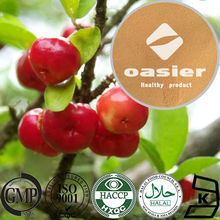 ISO Kosher Certificate Pure Natural 5% to 25% VC Acerola Cherry Extract Powder