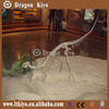 life size fiberglass dinosaur skeleton replica for shopping mall