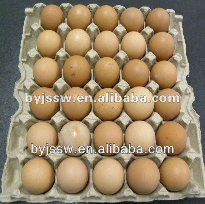 30 números pasta de papel bandeja de ovos