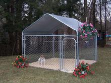 cheap galvanized iron fence steel dog kennels
