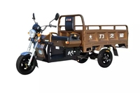 electric cargo tricycle / battery powered tricycle / popular in the Southeast Asian countries