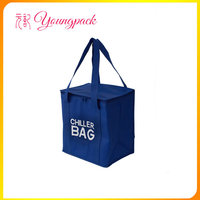 OEM high quality insulated cooler bag for food lunch box