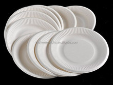 Manufacture disposable eco friendly bagasse plant fiber plate with high quality