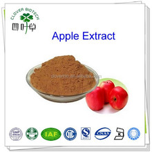 30% 50% 70% 80% polyphenol High quality Natural Apple Extract