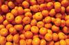 good-taste mandarin oranges
