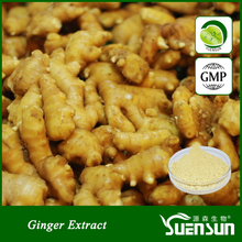 100% natural plant gingerol ginger root extract