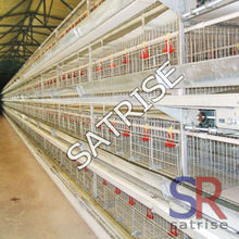 multi-tier chicken cage system equipment