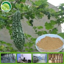 GMP factory and low price diabetes bitter melon extract with high quality
