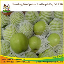 fresh green apples organic green apple
