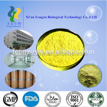 China manufacturer supply natural herbs medicine quercetin powder,quercetin,quercetin dihydrate