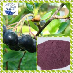 Anthocyanosides Acai berry extract / Acai berry P.E. / Acai berry powder