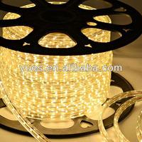 4.8W SMD3528 60pills IP68 AC220V waterproof led strip light