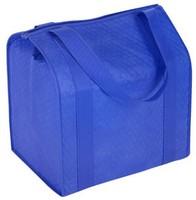 Fashion Cheap Coated Non Woven Shopping Bag Good Quality SB231