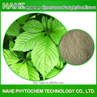 jiaogulan tea new tea seven leaf ginseng tea gynostemma pentaphyllum lower blood pressure