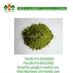 factory supply 100% Nature fresh matcha green tea /organic matcha /matcha powder