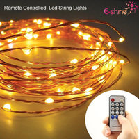 Customize 12V LED String Light With Remote Control And Power Supply