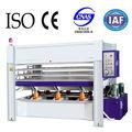 Caliente de la máquina de prensa hidráulica de la máquina de prensado en caliente