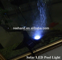 Waterproof Swimming Pool Solar Flood Light