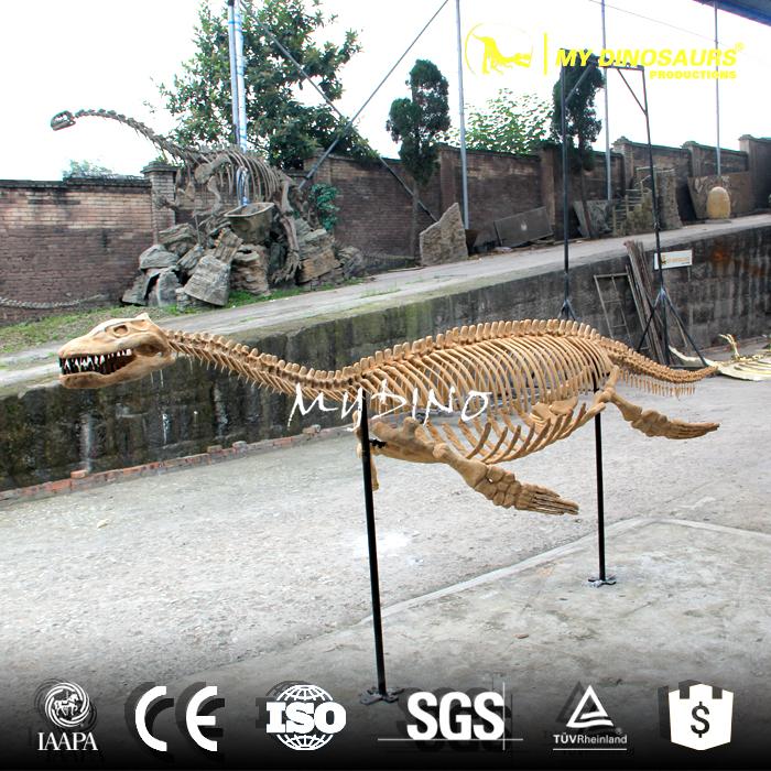 animal skeleton1.jpg