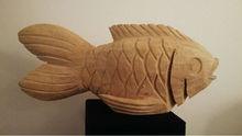 Swazi Fish