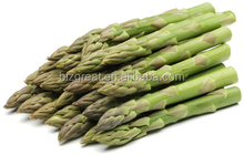 frozen vegetables, new crop IQF Frozen green Asparagus with best price for sale