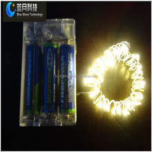 Shenzhen Bluemoon whole made mini christmas light bulbs with battery case