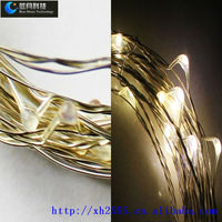 DC3v-12v 10M100LEDS Mini copper wire string lights for Xmas day and new year.