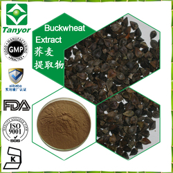 Buckwheat extract ,Buckwheat extract Powder 4:1,10:1,20:1, Rutin