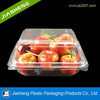 Disposable PET clear plastic hinged clamshell fruit food packaging containers
