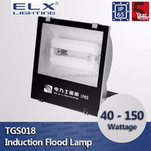 ELX Lighting induction flood light highway lamp post sealant