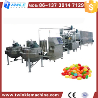 TKG010 JELLY CANDY MAKING MACHINE