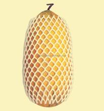 plastic foam packaging mango apple fruit wrap netting/sleeve net