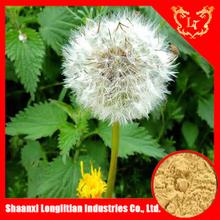 Low price dandelion root extract powder ,taraxacum extract with flavone 5%