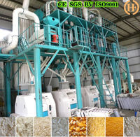 Hot sale 50t/d maize meal grinding machines
