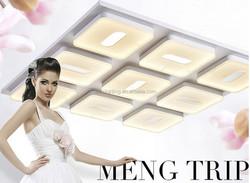 Creative fashion pendant light for living room /luxury chandelier ceiling lamp