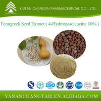 GMP factory supply natural herb Fenugreek Seed Extract