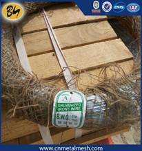 1.6mm Galvanised Wire 30m Ideal for fastening climbers, wall shrubs and border plants