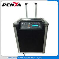 "Wide power AC85V to 260V portable outdoor 18"" subwoofer speaker box"