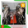 Piggery Farm Gestation & Farrowing Crate