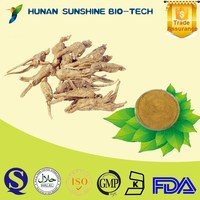 China Supplier Medicine for Blood Circulation Dong Quai P.E. Powder for Immune Booster
