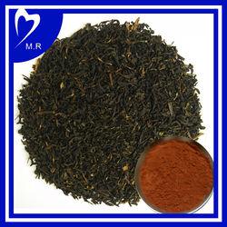 Black Tea Extract,Camellia sinensis O. Ktze.