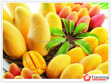 mango flavors for fruit juices