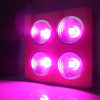 2015 Best Selling cob 800w indoor grow lighting LED Hydroponics lighting LED indoor gardening lighting