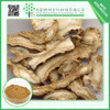 Factory supply Chinese chinese 10:1 ligustilide powder